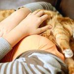 porque gato duerme conmigo