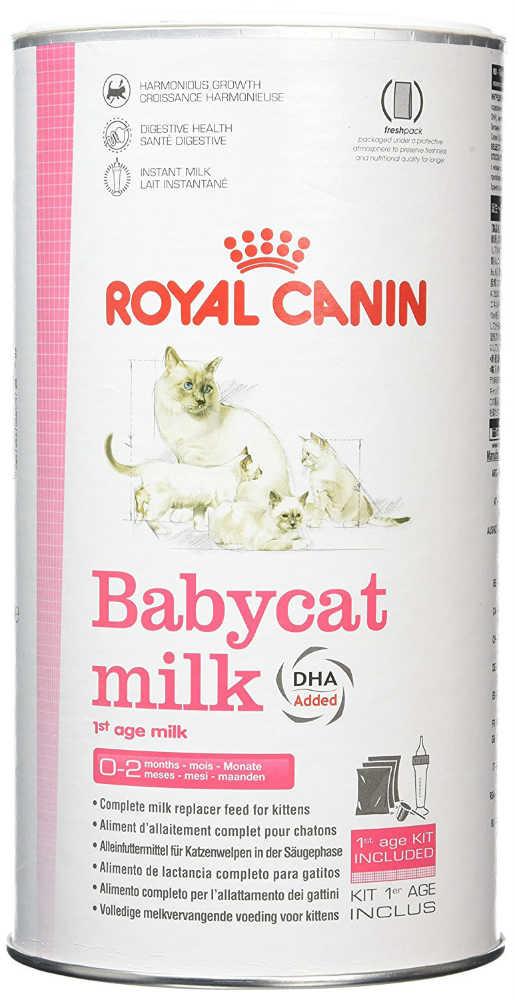 leche-para-gatitos