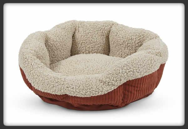 cama autotérmica para gatos