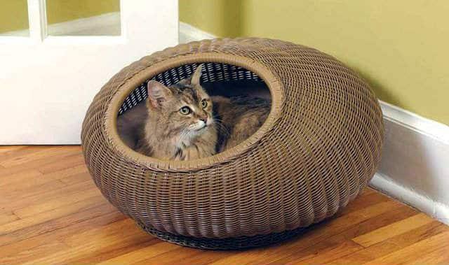 cama de mimbre para gatos