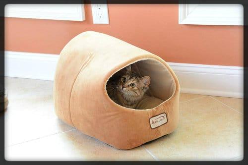la mejor cama cubierta para gatos