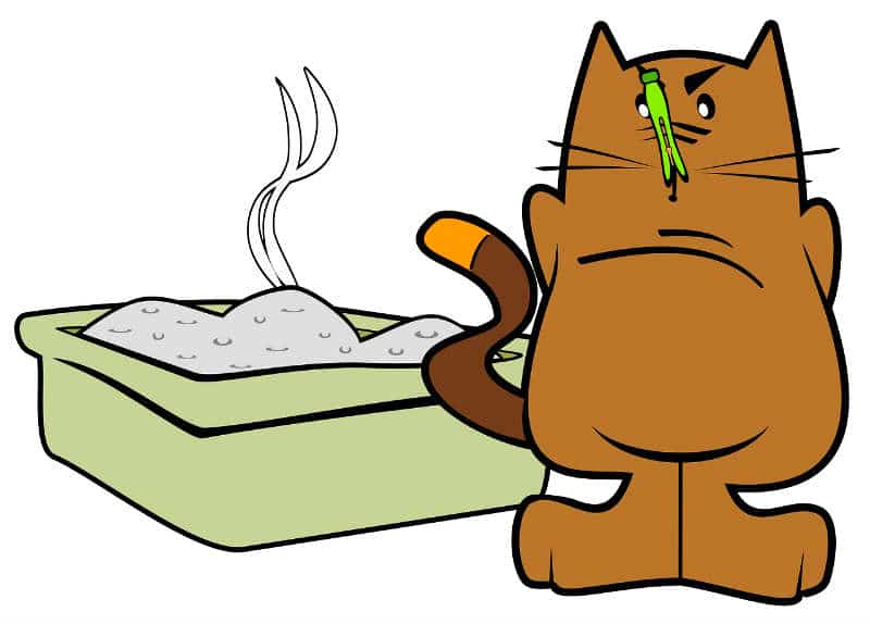 dibujo-gato-arenero