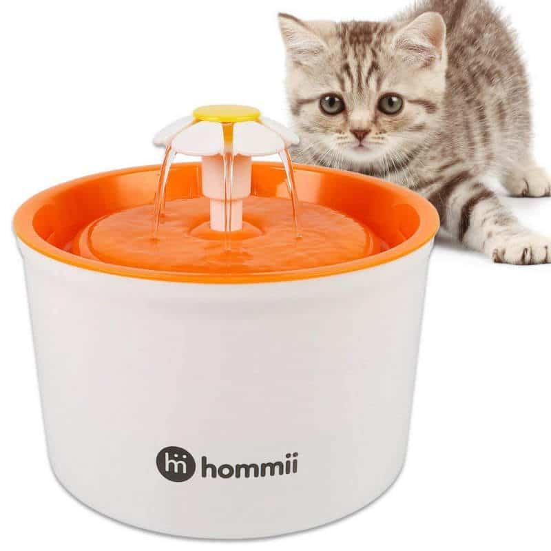 fuente-para-gatos