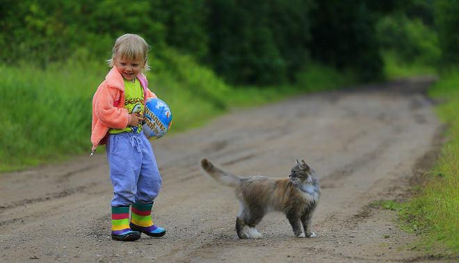gato con niña