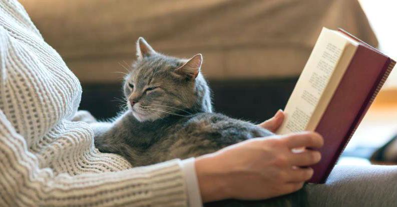 ¿Es malo dormir con gatos?