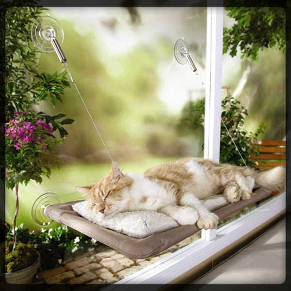 La merjor cama-hamaca de gato