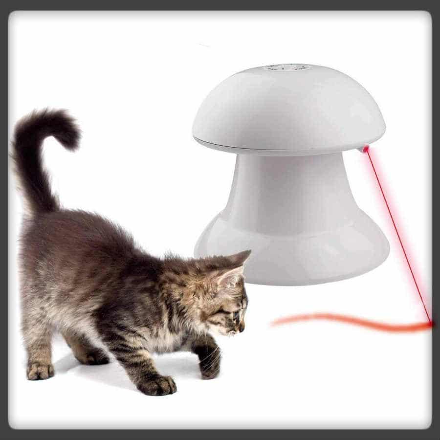 juguete automático para gatos
