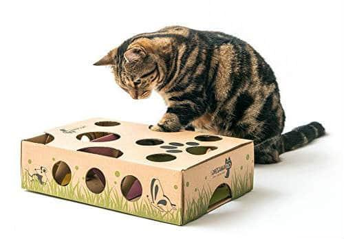 juguetes puzzle para gato