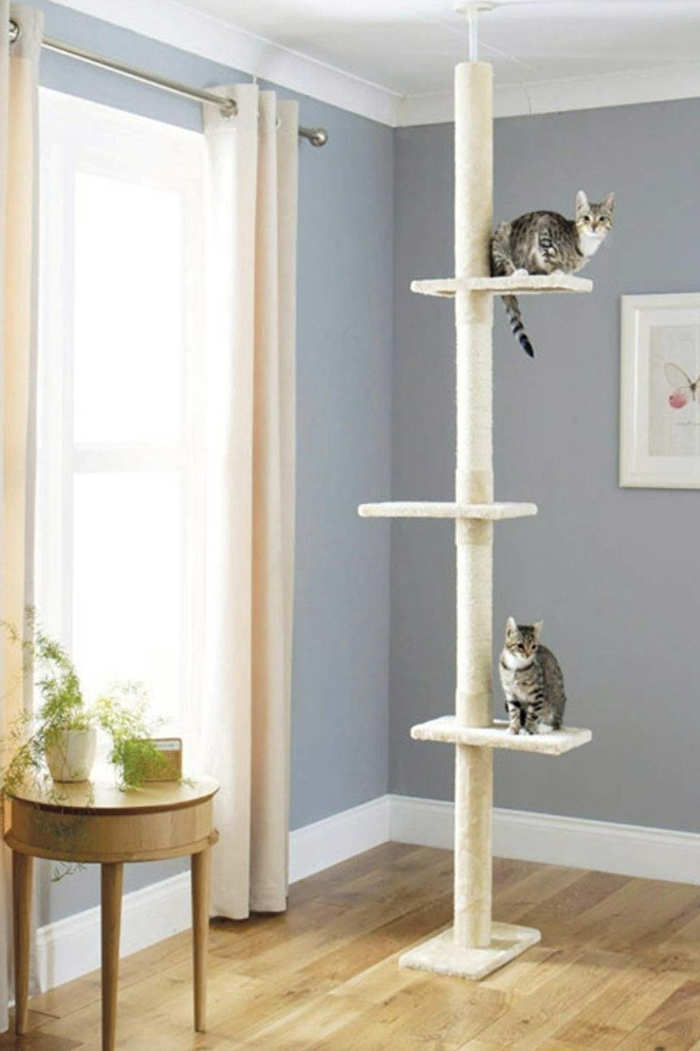 mejores rascadores para gatos